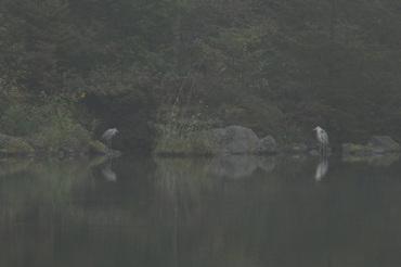 45dsc_0522