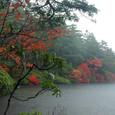 平成16年10月 9日 白駒の池