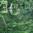平成17年 8月14日 遊亀湖
