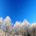 平成20年12月19日 松原湖高原