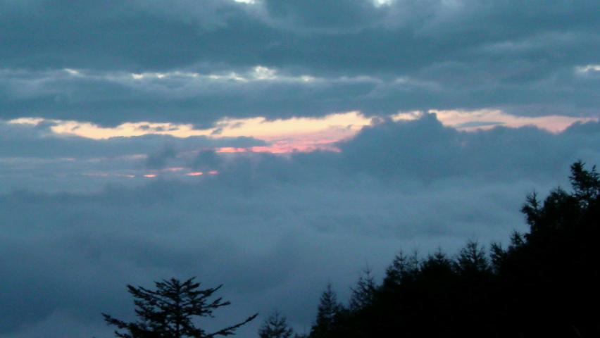 八千穂霧高原