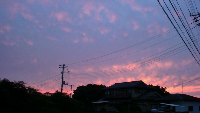 横浜丘陵地