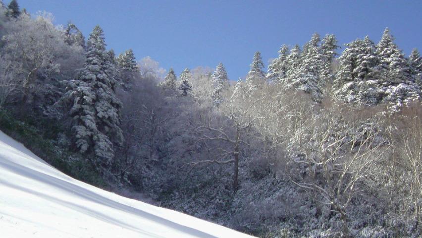 志賀高原熊の湯